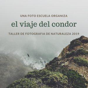 eduardo_segura_2019-01-04 at 18.16.18